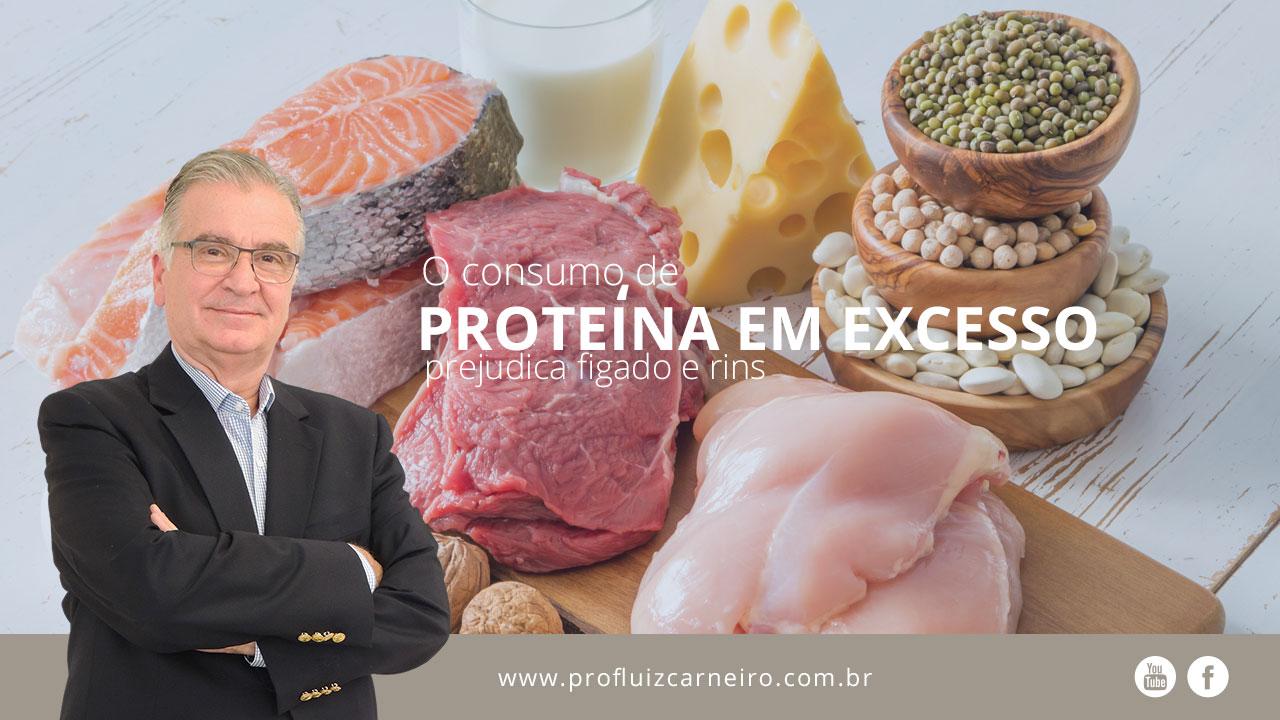 função da proteina animal no organismo