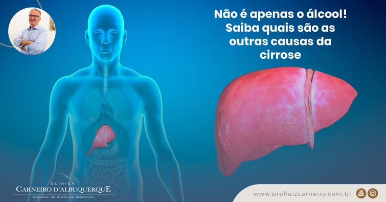 Ao fundo da imagem há uma ilustração do corpo humano com o fígado em destaque.