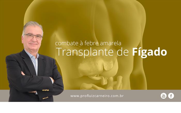 Febre Amarela Fantástico - Por Prof. Dr. Luiz Carneiro