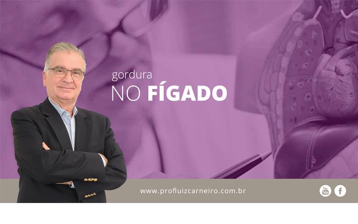 O que causa a gordura no fígado - Por Prof. Dr. Luiz Carneiro - USP - Hospital das Clínicas Divisão de Transplante de Fígado