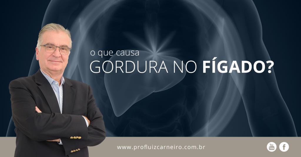 O que causa gordura no fígado? - Por Prof. Dr. Luiz Carneiro