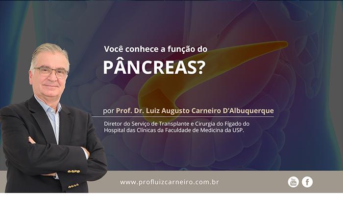 Função do Pâncreas – Por Prof. Dr. Luiz Carneiro