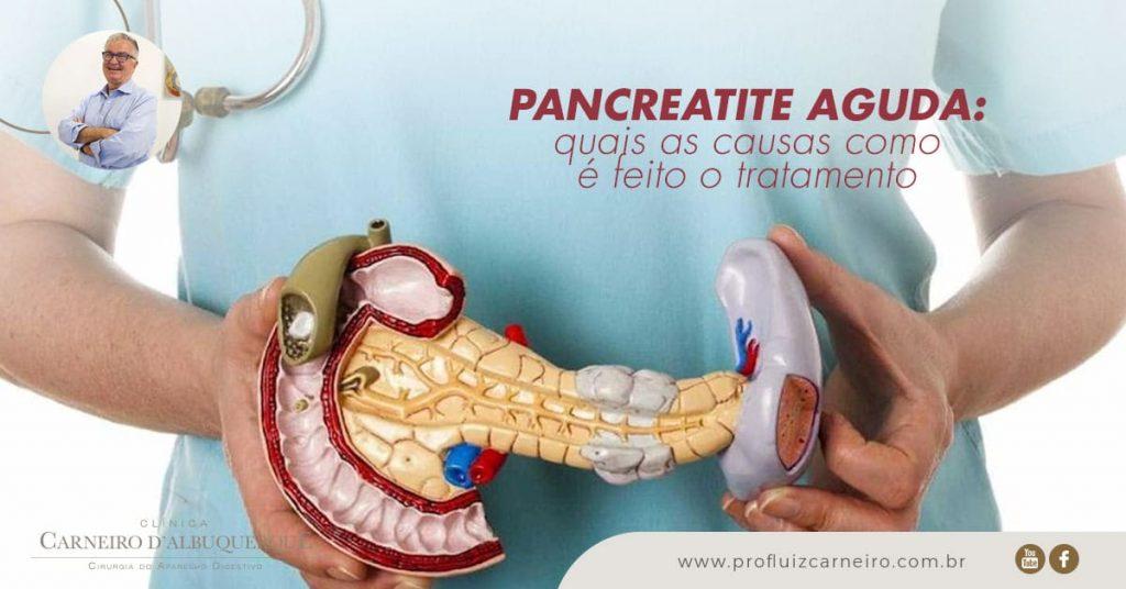 Ao fundo da imagem, há uma pessoa segurando uma representação de um pâncreas.