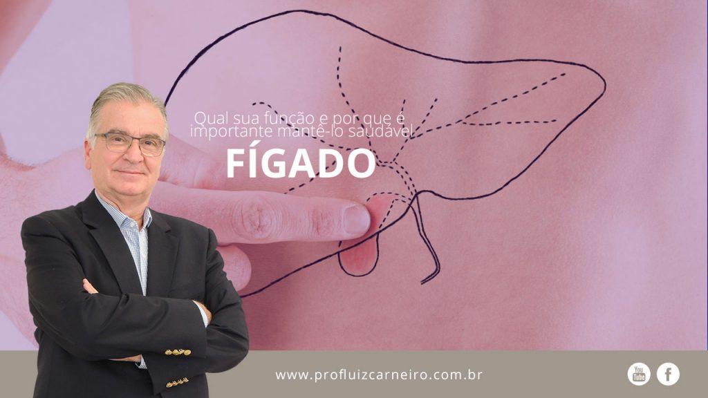 Qual a função do fígado e por que é importante mantê-lo saudável  | Por Prof Luiz Carneiro CRM 22761 | Diretor do serviço de transplante e cirurgia do fígado do hospital das clínicas da faculdade de medicina da USP.