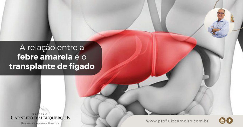 A relação entre a febre amarela e o transplante de fígado | Por Prof Luiz Carneiro CRM 22761 | Diretor do serviço de transplante e cirurgia do fígado do hospital das clínicas da faculdade de medicina da USP.