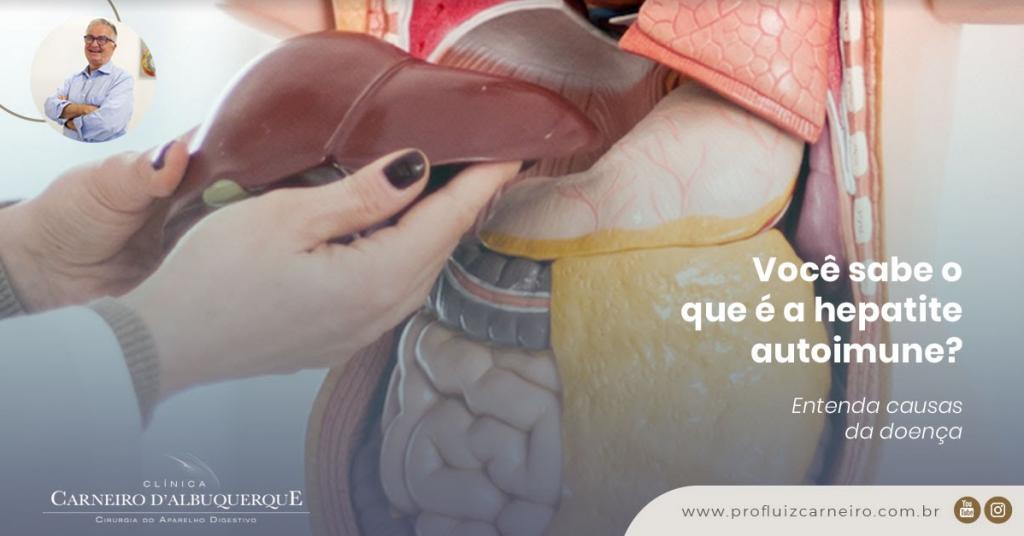 A imagem mostra uma foto de um modelo de um corpo humano, com uma representação do sistema digestivo à vista.