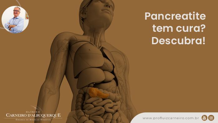 A imagem mostra uma representação do corpo humano em forma de boneco digital e o pâncreas está em evidência.