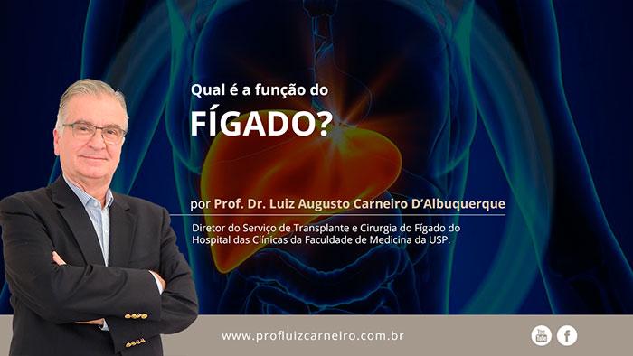 Qual é a função do Fígado? Prof Dr Luiz Augusto Carneiro D'Albuquerque