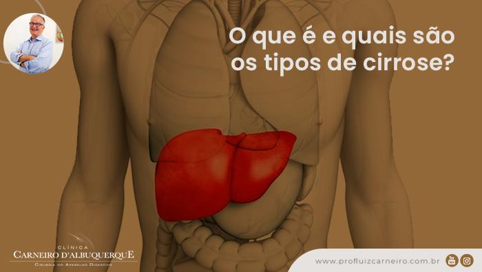 A imagem mostra uma representação gráfica do corpo humano com destaque em vermelho no fígado.